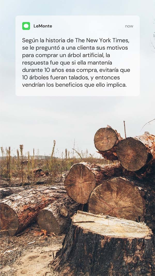 Árbol artificial durante 10 años