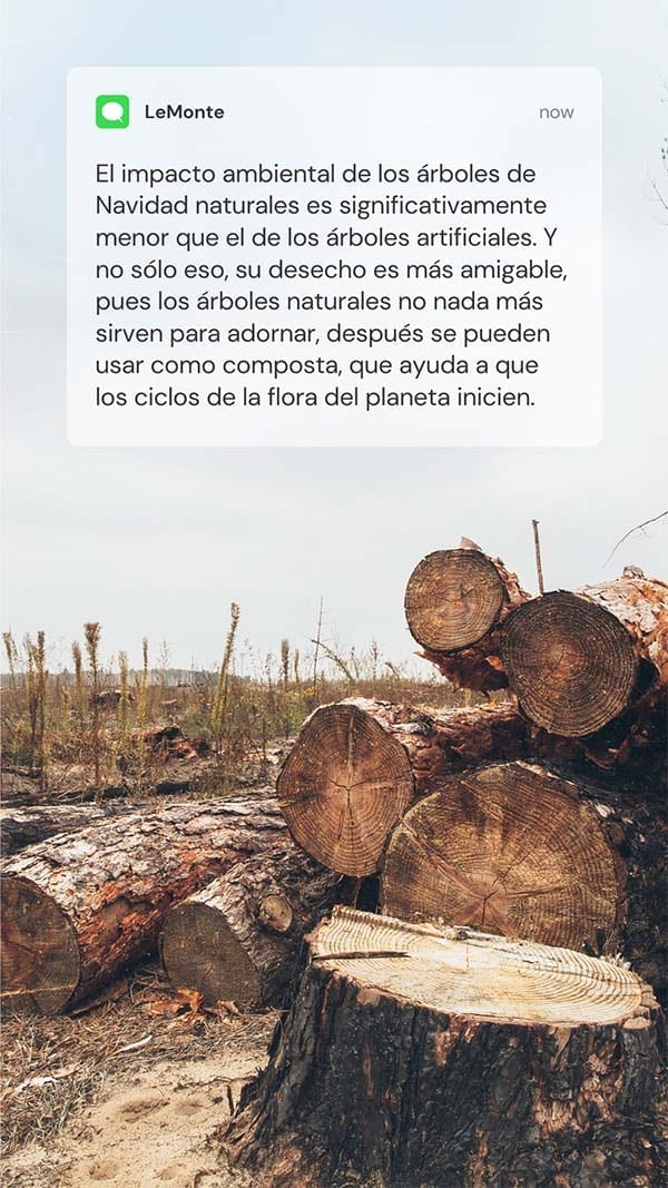 Árbol natural sirve para composta